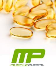 mp-fish-2