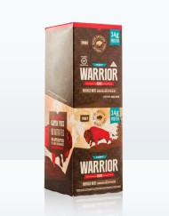 warrior-1