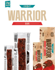 warrior-2